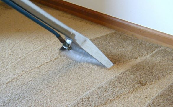 Doing steam carpet cleaning on floors