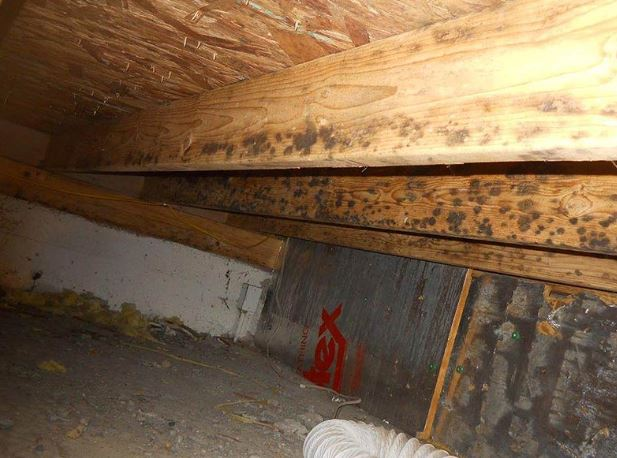 causes of crawl space water damage in home